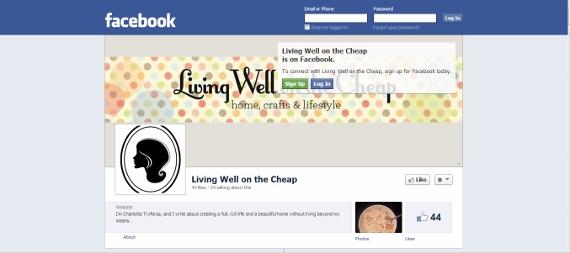 facebook page (570x253)